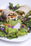 Veggie wrap and a salad. Stock Images