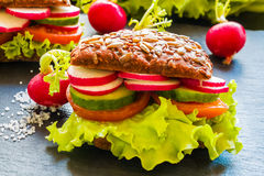 Veggieburger (grüner Salat, frische Gurke, Tomate, Rettich) und Rettich lizenzfreie stockbilder