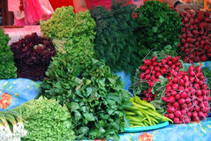 Veggies Στοκ Εικόνα