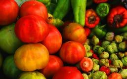 Veggies stock foto