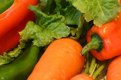 Veggies Fotografia Stock