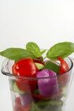 Veggies in a Blender royalty free stock image