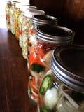 Veggies de la fermentación Fotos de archivo libres de regalías