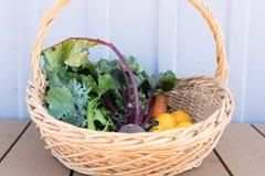 Veggies fraîchement sélectionnés dans le panier image libre de droits