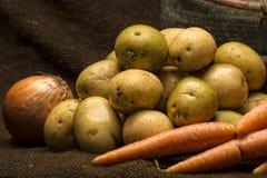 veggies korzeniowa zima Fotografia Stock