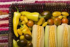 Veggies na tacy Zdjęcie Royalty Free