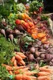 Veggies orgánicos Imagen de archivo libre de regalías
