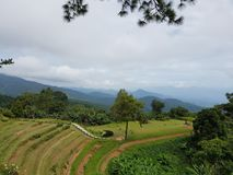 Hilltop  Sight  Seeing. Veggies  Planting  on Hilltribe Royalty Free Stock Images