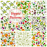 Veggies vector seamless patterns set of vegetables Stock Photography