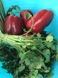 veggies stockbild