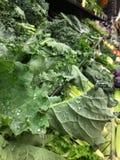 Veggies, Veggies, Veggies Image libre de droits