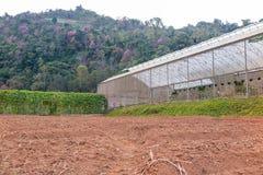 Veggieshuis en voorbereide landtuin Stock Foto's