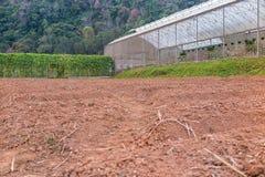 Veggieshuis en voorbereide landtuin Royalty-vrije Stock Fotografie