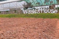 Veggieshuis en voorbereide landtuin Stock Afbeelding