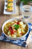 Veggiesoppa med linser och bulgur Royaltyfri Fotografi