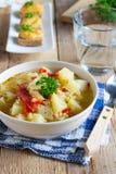 Veggiesoppa med linser och bulgur Royaltyfria Bilder