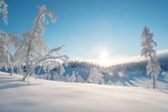 Vegglilandschap in de winter royalty-vrije stock afbeeldingen