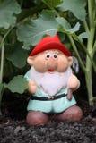 Vegi Gnome Lizenzfreie Stockfotos
