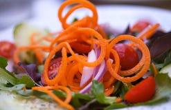 Vegi Salad. Full of fresh organic vegies stock image