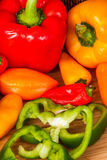 Vegtables sain Photo stock