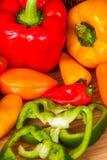 Vegtables sano Fotografia Stock