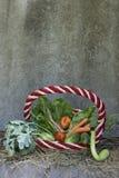 Vegtebles in a basket Stock Photography