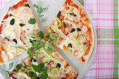 Vegterian Pizza Slice. Homemade Vegeterian Pizza with Cheese royalty free stock images