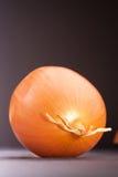 Vehículo de la cebolla Fotos de archivo