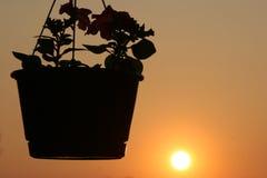 Vehículo y sol Foto de archivo libre de regalías