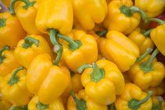 Vehículos amarillos de la pimienta Imagen de archivo libre de regalías
