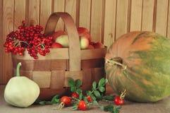 Vehículos, fruta y bayas Foto de archivo