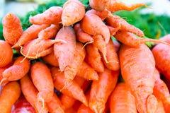 Vehículos orgánicos Zanahorias frescas en el mercado Imágenes de archivo libres de regalías