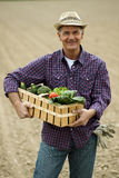 Vehículos que llevan del granjero foto de archivo libre de regalías