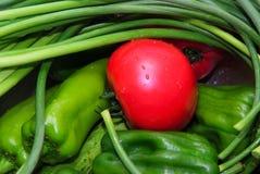 Vehículos rojos y verdes Foto de archivo
