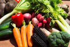 Vehículos sanos del alimento Carrotes, maíz negro imagen de archivo
