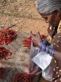 Vehículos tribales de la venta de las mujeres Foto de archivo libre de regalías