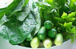 Vehículos verdes Foto de archivo libre de regalías