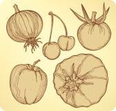 Vehículos y conjunto de la fruta, mano-gráfico. Enfermedad del vector Fotos de archivo