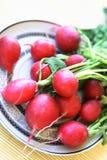 Vehículos y fruta coloridos Fotografía de archivo libre de regalías
