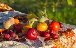 Vehículos y frutas en el vector Imagen de archivo