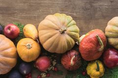 Vehículos y frutas otoñales Imagen de archivo