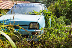 Vehicle abandoned to their fate and overgrown. Grass Stock Photography