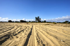 Vehicle tire tracks on dune with coastal trees and shrubs, puffy clouds in background. Hiking from the Pacific Coast in Monterey County through the dunes towards stock photos