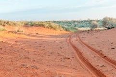 Vehicle tracks in red Kalahari sand Royalty Free Stock Photo