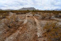 Vehicle Tracks Sonora Desert Arizona San Tan Mountains. Vehicle Tracks Sonora desert and San Tan Mountains in central Arizona USA stock image