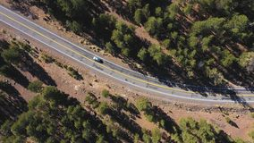 Vehicles rides on serpentine highway crossing pine forest on a mountain pass