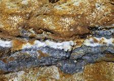 Veia de Hyrothermal Foto de Stock