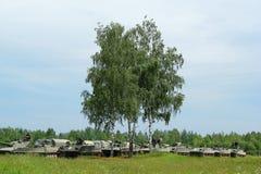 Veicoli blindati russi della colonna Fotografia Stock