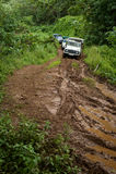 Veicoli su una strada non asfaltata fangosa attraverso la giungla in Tahaa, Tahit Immagine Stock