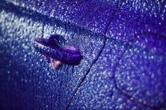 Veicolo coperto in ghiaccio durante la pioggia congelantesi Fotografia Stock Libera da Diritti